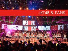 JKT48 & Fans - Survey #akb48 #jkt48