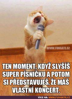 Ten moment, když slyšíš super písničku...