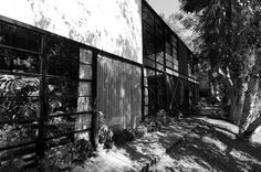 Gallery - AD Classics: Eames House / Charles and Ray Eames - 17