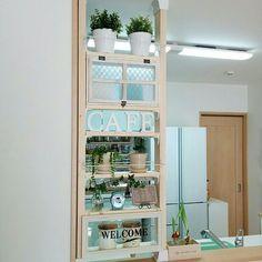 My Shelf/観葉植物/ダイソー/ナチュラル/IKEA/グリーン...などのインテリア実例 - 2016-03-26 10:28:55