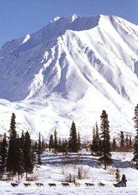 Scholastic.com | Iditarod Iditarod Unit Study