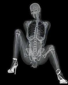 XXX rated calendar: Pin-up shows off her skeleton in series of x-ray poses Graph Design, Erotic Art, Pin Up Girls, Dark Art, Art Pictures, Photos, Memes, Anatomy, Buddha