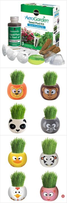 Shop Target for garden grow kits you will love at great low prices. Free shipping on orders of $35+ or free same-day pick-up in store. Camping Activities, Camping Crafts, Summer Activities, Craft Activities, Summer Crafts, Fun Crafts, Crafts For Kids, Arts And Crafts, Grow Kit