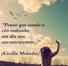 12 Melhores Imagens De Frases Cecília Meireles Texts Words E Amor