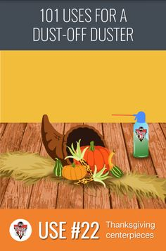 Use 22 of 101 for Dust-Off Dusters: Decorations! Get those centerpieces table ready for this Thanksgiving with Dust-Off household products.