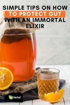 Simple Tips on How to Protect Your Gut with an Immortal Elixir Colon Health, Gut Health, Health And Wellness, Mental Health, Natural Health Remedies, Natural Cures, Natural Beauty, Healthy Life, Healthy Foods