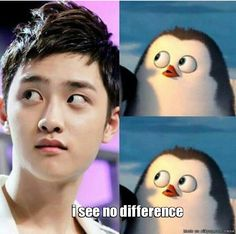 OMG He does look like that penguin!!! It's soooooooooo cuuuttttteee!!!