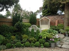Topiary, shrub and rose bed in front of top patio Topiary, Beautiful Gardens, Shrubs, Bliss, Garden Ideas, Shabby Chic, Patio, Country, Rose
