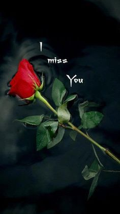 To my dear Joe ♡♡♡, l miss you♡. To my dear Joe ♡♡♡, l miss you♡. To my dear Joe ♡♡♡, l miss you♡. L Miss You, Miss My Mom, I Miss You Quotes, Missing You Quotes, Best Love Quotes, Love Quotes For Him, Missing Dad, Hot Quotes, Quotes Pics
