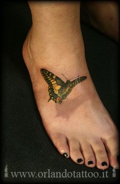 Butterfly tattoo by orlando tattoo  love