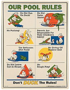 Cute Pool Rules with Duck Animation