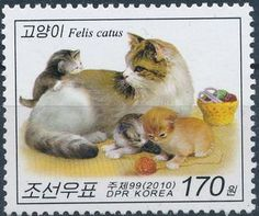 Cat with three kittens
