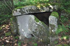 Уникальные редкие дольмены в Сочинском Национальном парке - megalithica.ru Garden Sculpture, Outdoor Decor
