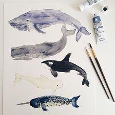 Aquarelle baleine Print Dusty Blues & gris 11 par ShannonKirsten
