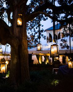 Antique lanterns hung from the trees on the walkway from the cocktail hour area to the tented reception area.