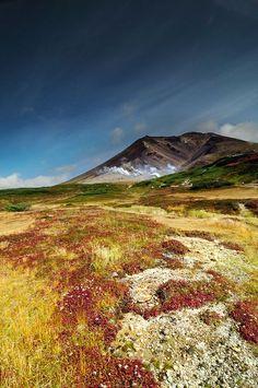 【旭岳】20の連峰で構成される「大雪山」の一つ。北海道のほぼ中心にあり、標高は2千メートル級だけど、北緯が高いので高山植物が豊富。自然動物もたくさん見られる。旭岳ロープウェイで行くことができる。