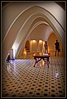 Gaudi Curves interior Casa Batlló  Barcelona  Catalonia