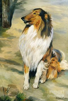 Collie Painting by Valery Semenov