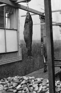 Sergio Larrain,Valparaiso, Chile, 1963. © Sergio Larrain / Magnum Photos