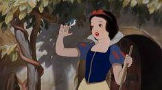 Bildergebnis für snow white bird