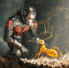 7/16/17   1:41p  Marvel  ''Ant-Man'' A Relative 7/17/15