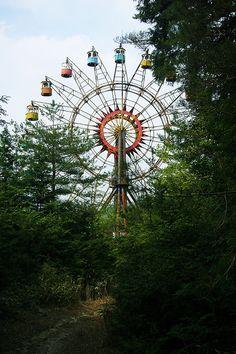 abandoned amusement park in the forest 甲賀ファミリーランド: 観覧車というものはとてもフォトジェニックなのでいろいろと凝ったアングルで撮りたくなるが、ここのは正面が一番いい。この茂みの向こうに朽ち錆びた観覧車が立っていると思うとドキドキした。