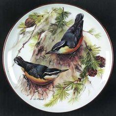 Tirschenreuth Band's Songbirds of Europe: Corsican Nuthatch - Artist: Ursula Band