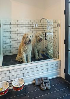 5 benefits of having a dog wash station in your home benefit 14 ways to transform your mudroom solutioingenieria Image collections