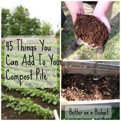 How To Compost - The Basics, and 45 Things You Can Add To Your Compost Pile!