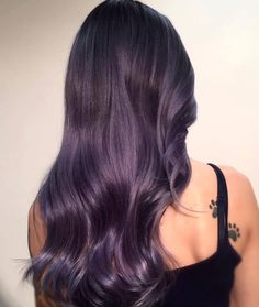 dark gray purple                                                       …
