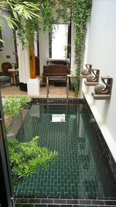 Small Swimming Pools, Small Backyard Pools, Small Pools, Swimming Pools Backyard, Swimming Pool Designs, Backyard Ideas, Backyard Patio, Backyard Designs, Patio Decks