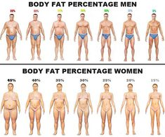 This report examines the body composition by the study of relative measurements of body mass index (BMI), waist hip ratio (WHR) and body fat percentage. Muscle Fitness, Fitness Tips, Fitness Workouts, Easy Fitness, Fitness Pal, Health Fitness, Body Fat Percentage Chart, Bmi, Workout Motivation