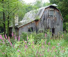 Blackberry Barn in NY