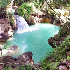 Breadnut Valley Falls ☺️ throwback - Maggotty, #StElizabeth via @be_jaminbenj ━━━━━━━━━━━━━━━━━━━ See what you missed on @viewjamaica. ━━━━━━━━━━━━━━━━━━━