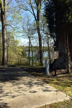 A few King's Creek Tent Sites on #Cheatham Annex #Campgrounds have a wonderful view of King's Creek. This is the view of from #14.