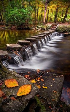 Stepping Stones, Tollymore, Ireland