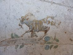 Oplontis: Goat by petrus.agricola, via Flickr