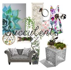 """""""chic succulents home n fashion"""" by la-shaya-ramos ❤ liked on Polyvore featuring interior, interiors, interior design, home, home decor, interior decorating, City Chic, NDI, Emerald Home Furnishings and Charlotte Cornelius"""