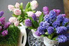 cách làm hoa bằng giấy