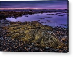 """Low Tide In Blandford, Nova Scotia acrylic print by Mike Organ.   Bring your artwork to life with the stylish lines and added depth of an acrylic print. Your image gets printed directly onto the back of a 1/4"""" thick sheet of clear acrylic. The high gloss of the acrylic sheet complements the rich colors of any image to produce stunning results. Two different mounting options are available, see below."""