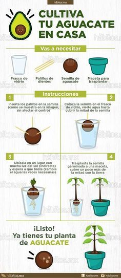 Hydroponic Gardening 10 Step-by-Step to Build Backyard Garden Ideas with Vegetables Tags: backyard garden vegetable, backyard garden, backyard garden large, backyard garden ideas, backyard garden design Backyard Ideas For Small Yards, Small Backyard Gardens, Backyard Garden Design, Large Backyard, Backyard Landscaping, Backyard Designs, Backyard Kitchen, Rustic Backyard, Modern Backyard