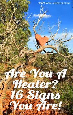 I've put together a list of 16 signs that you're a healer. m also good mediations a look here to learn more. Spiritual Healer, Spiritual Guidance, Spiritual Growth, Spiritual Awakening, Spiritual Meditation, Spiritual Gifts, Spiritual Practices, Psychic Development, Spiritual Development