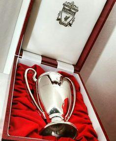Liverpool Anfield, Liverpool Champions, Liverpool Players, Liverpool Fans, Liverpool Football Club, Football Fans, Champions League, Football Players, Lfc Wallpaper