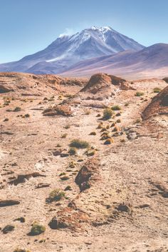 Valle de Rocas - a field of igneous rocks in strange formations. The field is bordered by 3 volcano peaks marking the border between Chile and Bolivia. When standing there in person it is apparent that a large eruption is the cause of the valley of rocks.