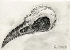 bird skull by Marta Ciuk