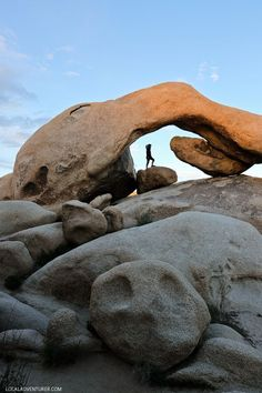 Arch Rock Joshua Tree National Park California + 11 Amazing Things to Do in Joshua Tree // http://localadventurer.com