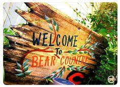 BearCountry. by Darryl Weddington