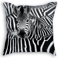Zebra Throw Pillow Throw Pillows, Prints, Cushions, Decorative Pillows, Decor Pillows, Pillows, Scatter Cushions
