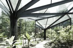 Grueningen Botanical Garden, idA Buerher Wuest Architekten, Voronoi diagram…