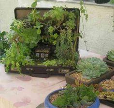 miniature garden won in oc fair 2013